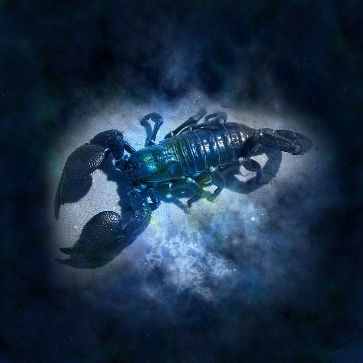 Scorpio Horoscope Characteristics